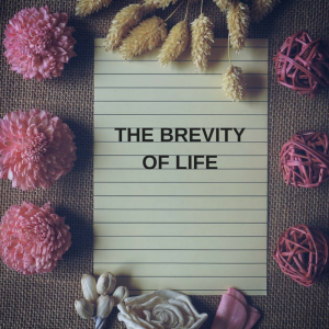 THE BREVITY OF LIFE (1)
